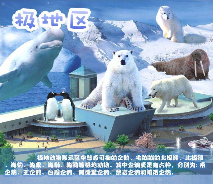 武汉极地海洋世界旅游攻略 武汉极地海洋世界一日游