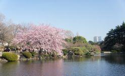 日本旅游签证 去日本旅游签证