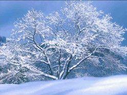 博远棋牌娱乐到黑龙江哈尔滨旅行团费用 吉林雾凇 万科滑雪 长白山 中国雪乡 亚布力6日游